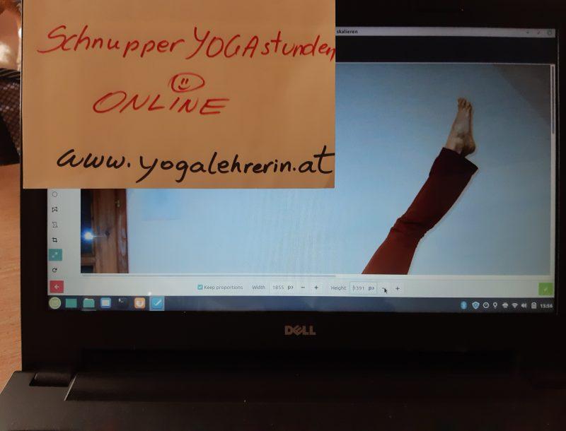 Yoga & Strömen: GRATIS-SCHNUPPERN beim ONLINE-YOGA