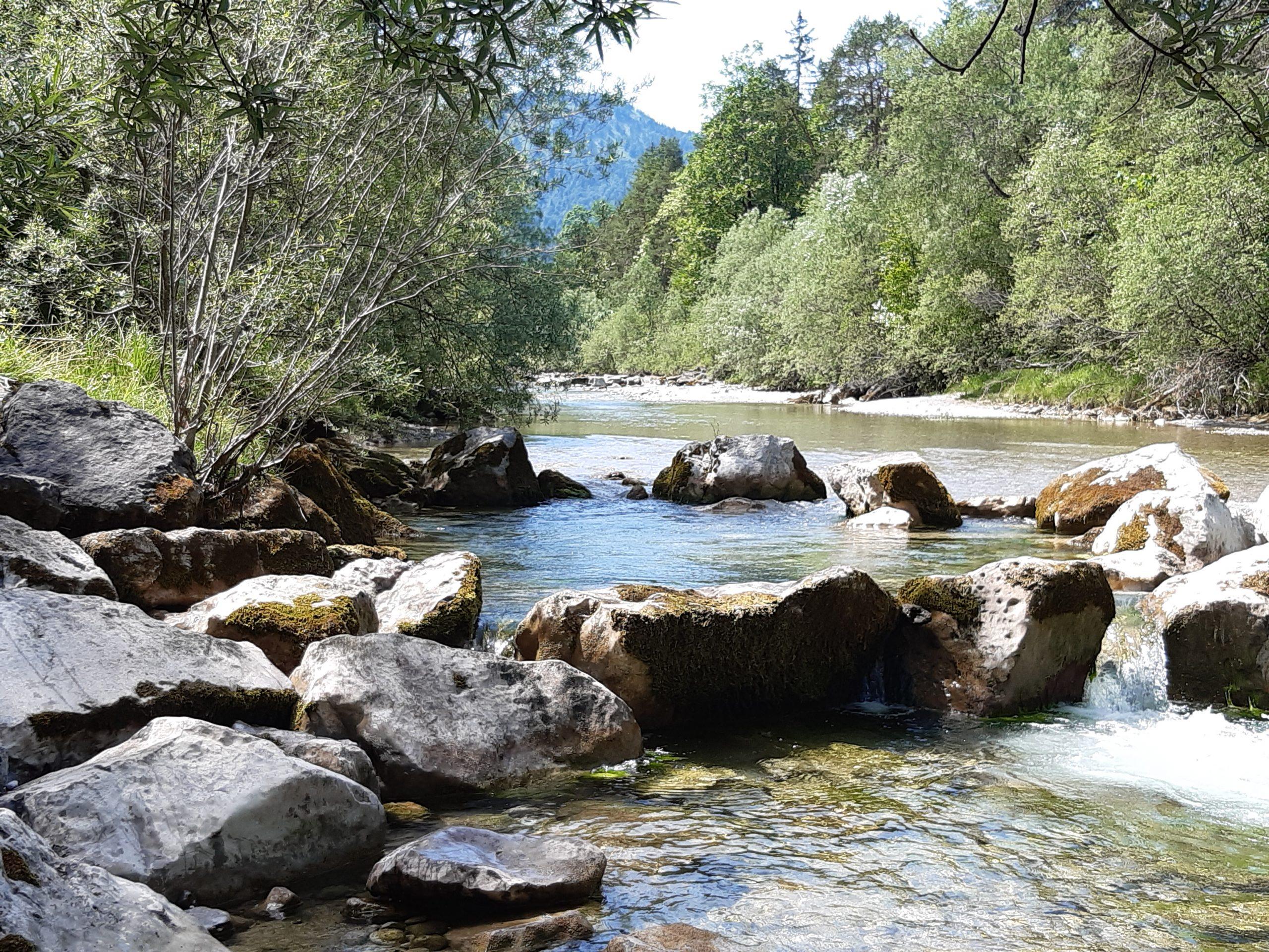 Lebendiges Wasser – die Idee des Strömens