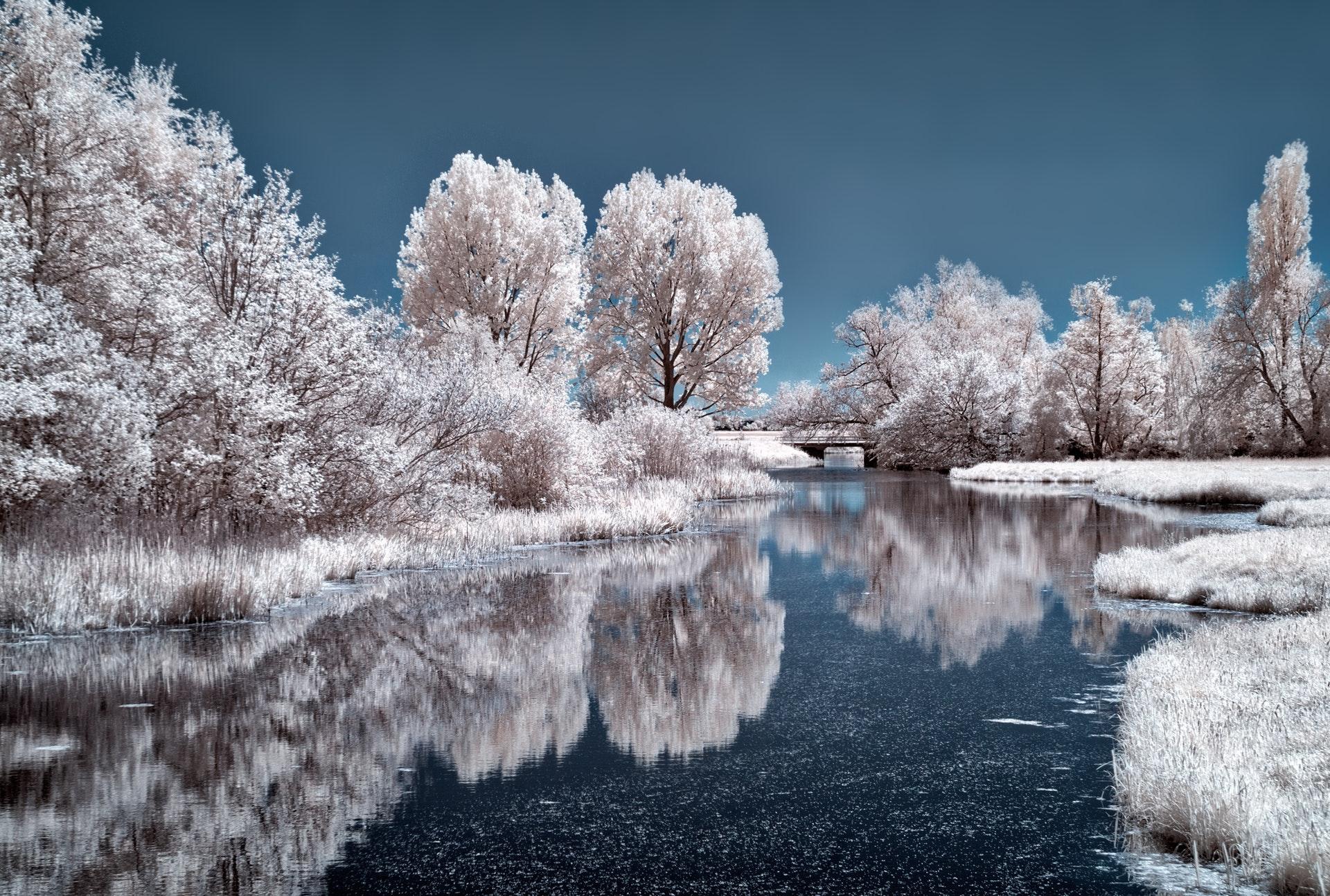 Die tiefe Winterstille und unsere Nierenkraft